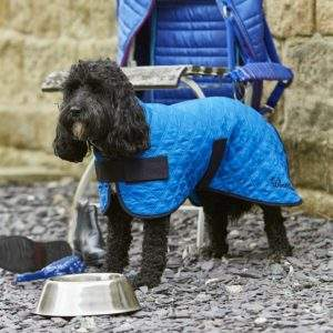 Woofmasta Dog Cooling Coat