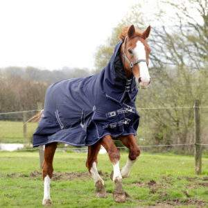 Rhinegold Lightweight Turnout Rugs