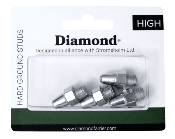 Diamond Hard Ground XL Studs