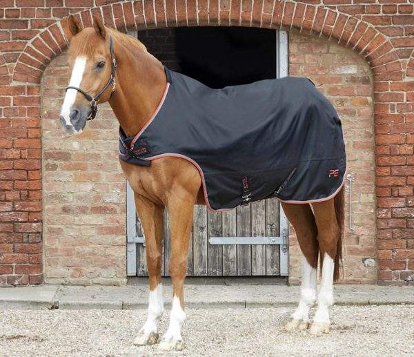 Premier Equine Horse Walker Rug 100g