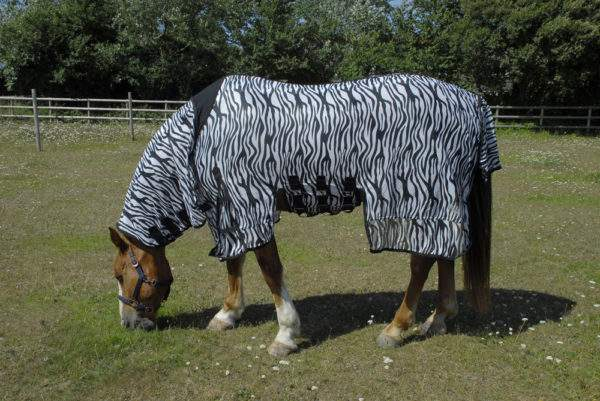 Rhinegold Sahara Zebra Print Full Neck Fly Rug