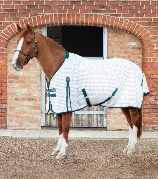 Premier Equine Cotton Stable Sheet