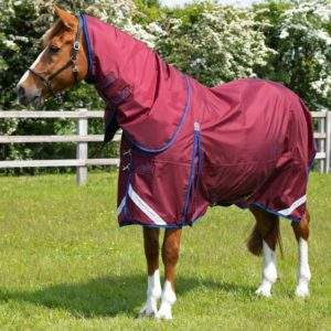 Premier Equine Buster 40g Turnout Rug with Classic Neck Cover