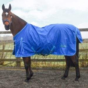 Whitaker Exley 0g Turnout Rug