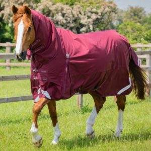 Premier Equine Buster Storm 90g Combo Turnout Rug with Classic Neck