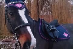 Tosca-JW-diamond-saddle-cloth-fly-veil-h400px
